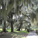 20. Fort Frederica National Monument, Ga.