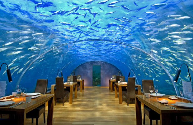 Ithaa Undersea restaurant sits 16 feet below sea level at the Conrad Maldives Rangali Island, a hotel resort in Hilton's luxury brand that occupies two islands. Maldives is a country of almost 1,200 islands about 300 miles from the southernmost points of India and Sri Lanka.<br>