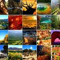 America's most-visited national parks