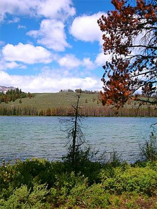 "<b>Redfish Lake, Sawtooth National Recreation Area, Idaho</b><br> <br> Redfish Lake is set in a beautiful mountain valley about 2 1/2  hours northeast of Boise. The peaks are comparable to the Grand Tetons.<br> <br> <b>Info:</b> <a href=""http://www.redfishlake.com"">www.redfishlake.com</a><br> <br> -- Dustin Brashear, Hollywood"