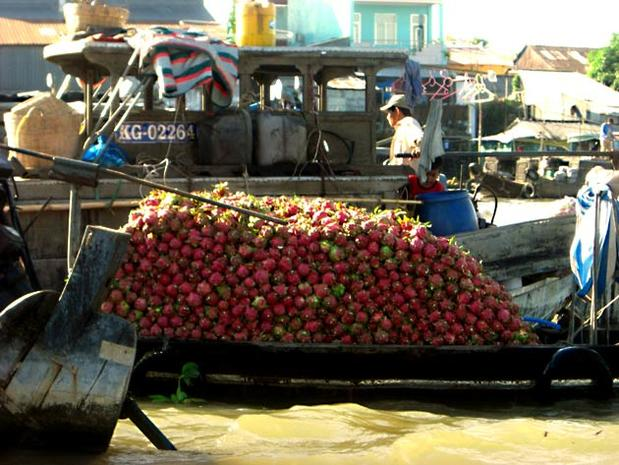 One of Can Tho's most popular attractions is its floating markets, where vendors sell fruit and vegetables on boats. The produce is mostly for wholesale, but a few sellers have retail selections. Cai Rang market, pictured, is the Mekong Delta's largest market. It's on the Can Tho River about an hour southwest of Can Tho by boat. Business begins at dawn and trails off around 9 a.m., so come early if you want to see the market in full swing. This boat is piled high with dragon fruit.