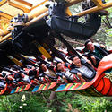 20) Everland - New roller coaster