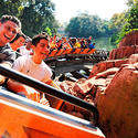 """Jersey Shore"" star Pauly D shares a laugh and a ride on Big Thunder Mountain Railroad at the Magic Kingdom."