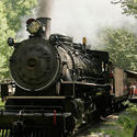 8) Dollywood Express