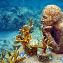 Offbeat Traveler: The Cancun Underwater Museum
