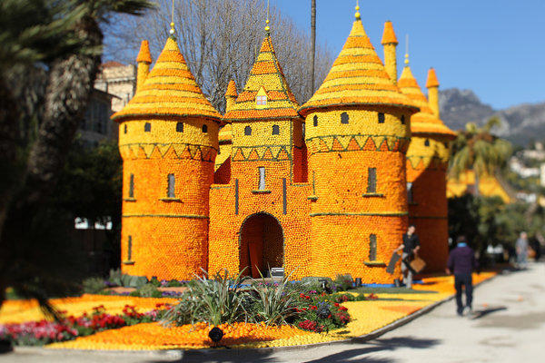 <i>Feb. 16 to March 6</i><br /><br />