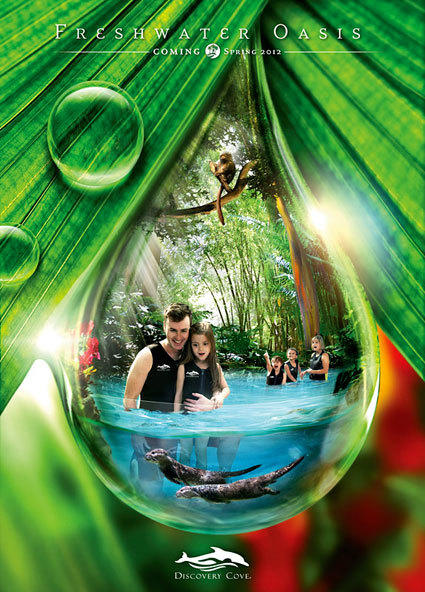 In spring 2012, the Freshwater Oasis swim-with-sea life lazy river will debut at Discovery Cove, SeaWorld Orlando's adjacent boutique park.