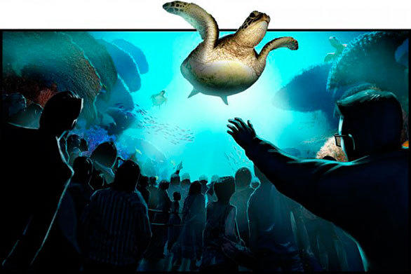 The six-minute TurtleTrek 3-D movie at SeaWorld Orlando will take visitors on an underwater journey from a sea turtle's perspective.