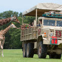 Safari Off Road Adventure