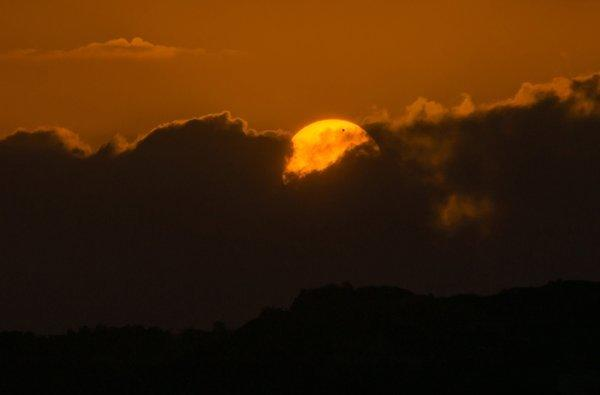Allegro notes that in this photo, the partially obscured sun resembles the head of an eagle and Venus serves as its eye.