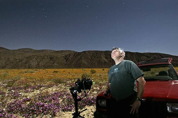 Photographed by the light of the moon, Dennis Mammana of Borrego Springs looks up at the stars above a huge field of wildflowers on Henderson Canyon Road. The astronomy photographer and lecturer pulled over to photograph the night sky and the best desert wildflower bloom in several years.