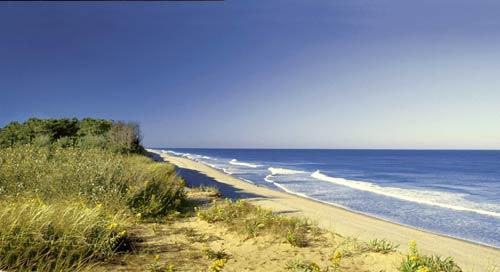 "This is one of six beaches in Cape Cod National Seashore. It's a popular swimming spot but also offers places for bird-watching and seal spotting.<br> <br> Coast Guard Beach info: <a href=""http://www.nps.gov/caco/planyourvisit/coast-guard-beach-eastham.htm"">www.nps.gov/caco/planyourvisit/coast-guard-beach-eastham.htm</a><br>