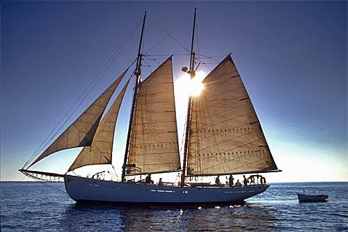 Have time to spare? A few schooners still serve Catalina, including the Dirigo II. The trip's leisurely  — about five hours to reach the island. With a decent wind, the schooner will make it back to the mainland in four.