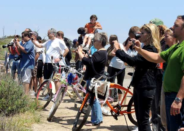 The marine mammal attracts a crowd at the Bolsa Chica wetlands.