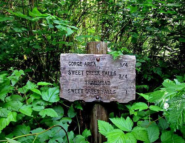 A rustic sign promises adventure in the rain forest off scenic Highway 126 between Eugene and Florence, Ore.
