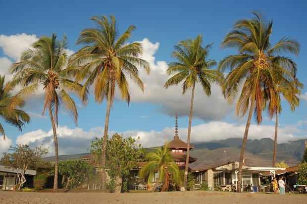At the north end of Lahaina, under a row of palm trees and next to several private beachfront homes, visitors can find the Lahaina Jodo Mission Buddhist Cultural Park.