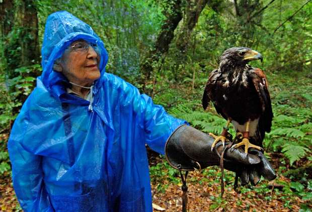 American tourist Ellen Cusack takes a falconry class offered on the grounds of Ashford Castle.