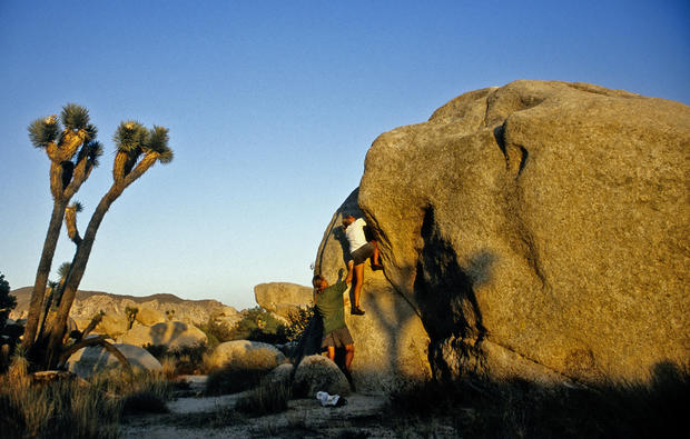 "<br> California<br> <br> <b>Visitors in 2009 (through August):</b> 875,666<br> <br> Joshua Tree is home to an impressive collection of wildflowers, world-class rock-climbing and amazing rock formations. On the park's nearly 800,000 acres are 501 archaeological sites, a dozen self-guided nature hikes and 700 species of vascular plants and 88 historic structures.<br> <br> <b>More info: </b><br> <br> <a href=""http://www.nps.gov/jotr/index.htm"">http://www.nps.gov/jotr/index.htm</a><br> <br> <b>Related: </b><br> <br> <a href=""http://travel.latimes.com/articles/la-trw-cabest18nov18"">15 places to visit to see the real California</a><br>