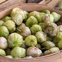 Tomatillos, in their trademark husks