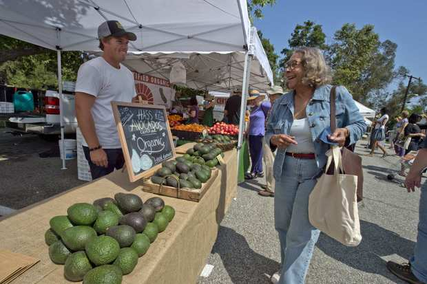 Ted Bliss sells Hass avocados grown in Carpinteria.