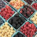 Mixed berries at the farmers market