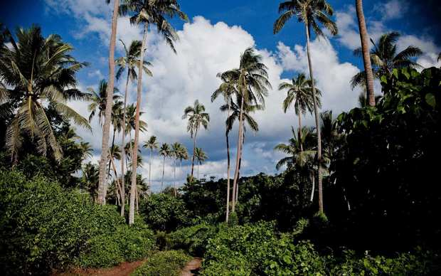 Among the natural resources on the island are an abundance of coconuts trees and coconut crabs.