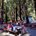 George Washington Picnic Area, Santa Cruz