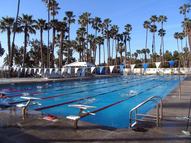 Love to do laps? When in Santa Barbara, put on your goggles and take your mark at Los Banos del Mar,  fringed by tall palm trees on the ocean at West Beach. Los Banos is 50 meters long with seven lanes, so it never feels crowded.