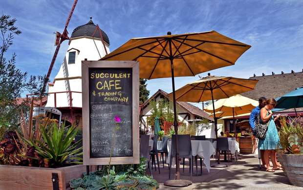 Succulent Cafe located along Mission Drive.