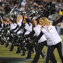 Eagles vs Panthers Cheerleaders and Fans