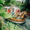 Kali River Rapids at Walt Disney World Animal Kingdom