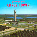 Greetings from the Citrus Tower ... classic Florida postcards
