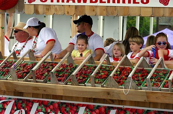 The Ponchatoula Strawberry Festival happens in the spring in Louisiana.