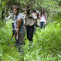 Daryl leads the gang