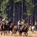 <b>Lake City:</b> Largest Civil War battlefield in Florida