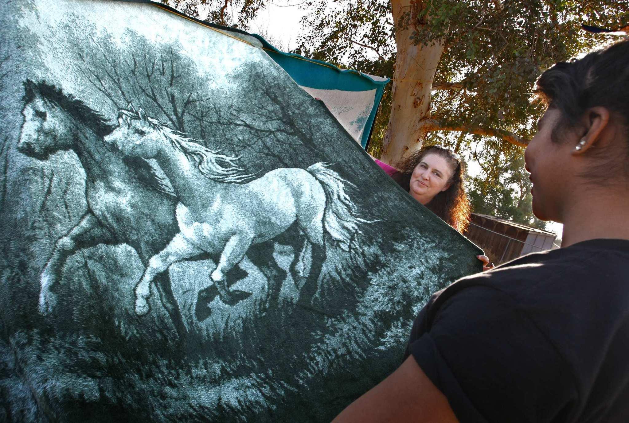San Marcos Blankets La Times