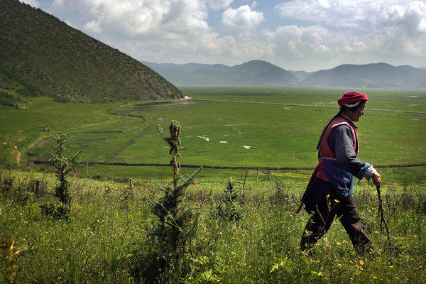 On the slopes above the Yangtze River headwaters, Chun Zhui and her family receive government money to forgo the usual crops and grow trees to help keep soil and rainfall in place. (Rick Loomis / Los Angeles Times)