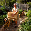 Creating A No Dig Garden La Times