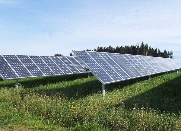 Sunpower Solar Stocks Surge After Warren Buffett Buys