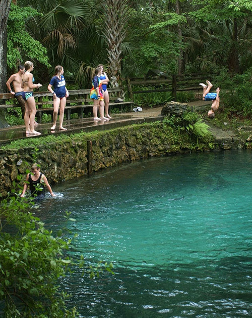 Florida Springs Guide Juniper Springs In The Ocala