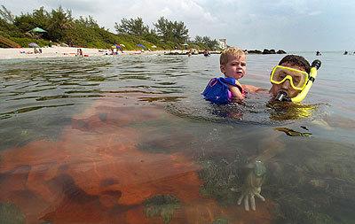 Boca Raton Shopping >> Guide to Boca Raton beaches - Sun Sentinel