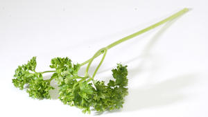 Wilted parsley