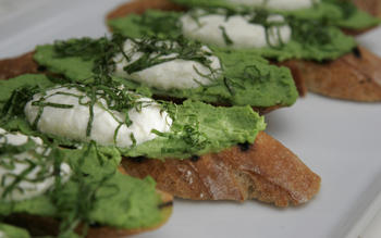 Crostini with English pea puree and Greek yogurt
