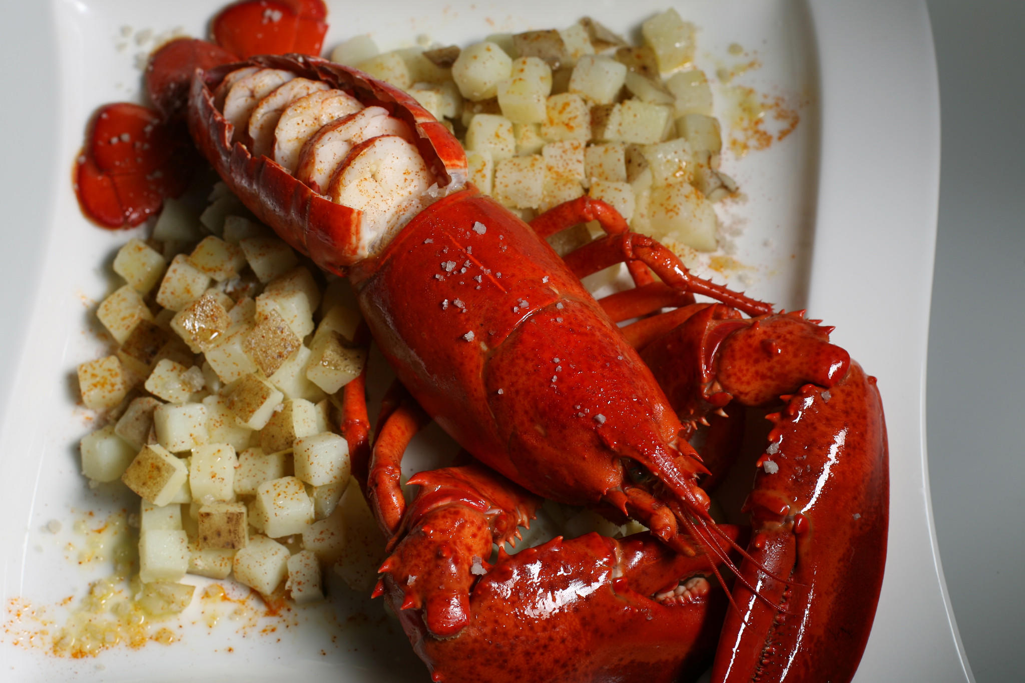 Bogavante a la gallega (Galician lobster)