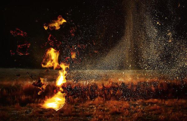 Stephanie Washburn, 'Telltale (Fire 2),' 2013