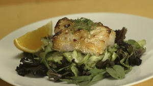 Miso-glazed black cod