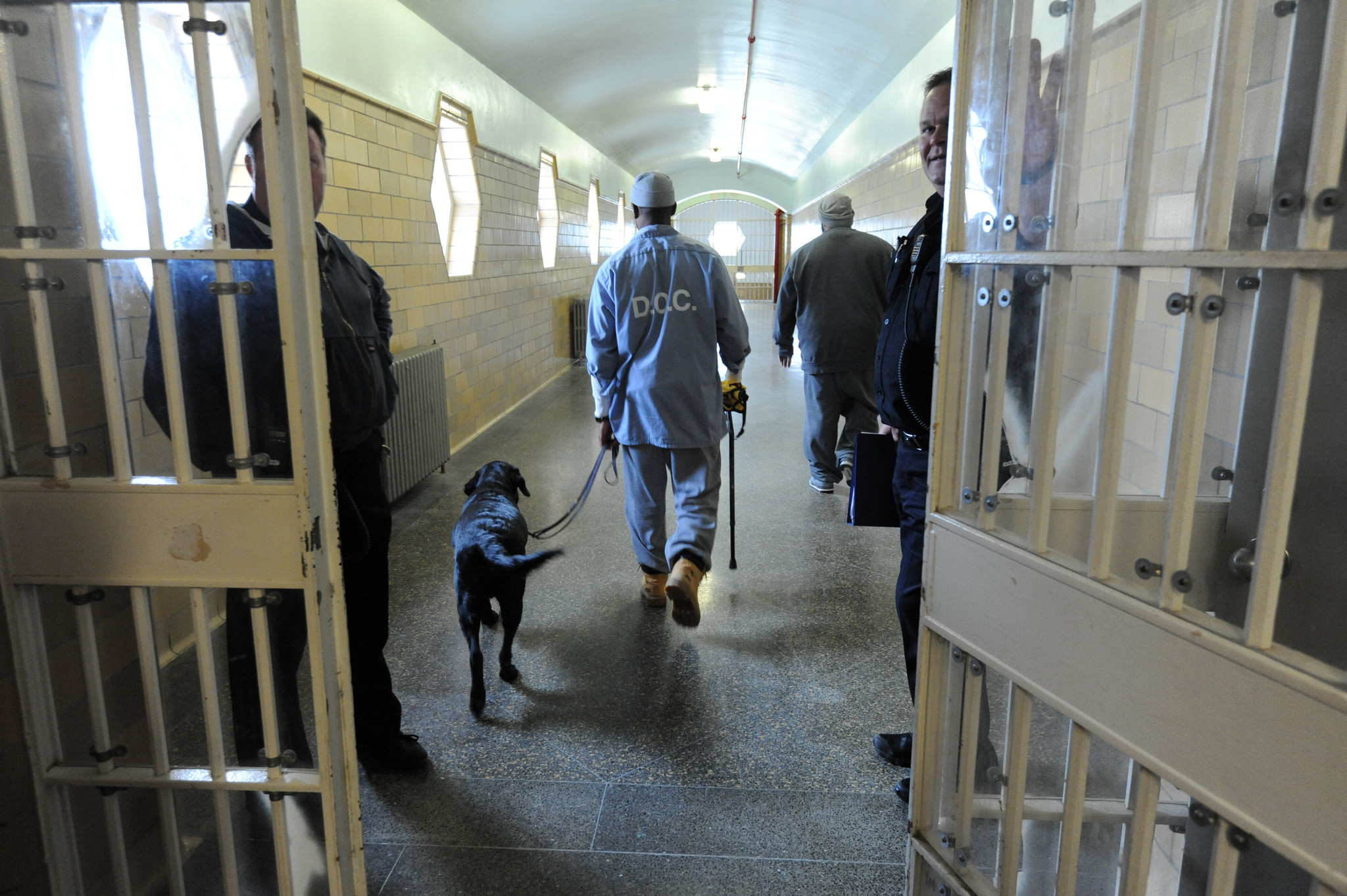 Maryland Prisoners Train Service Dogs For Veterans