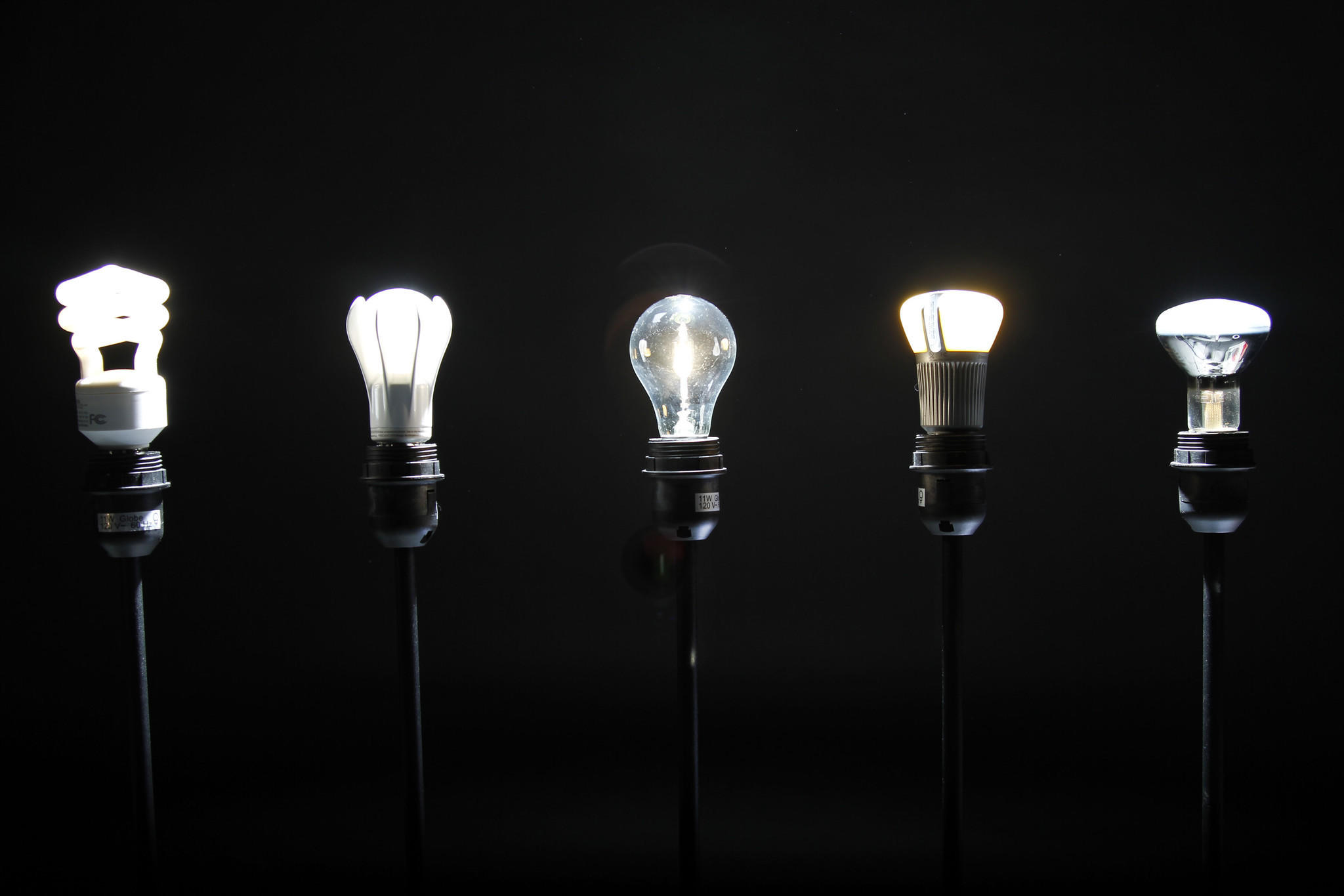 Different types of light bulbs including incandescent fluorescent halogen and led