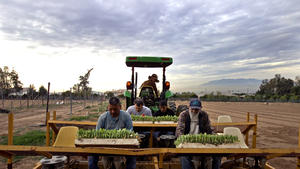 LAUSD food effort makes local farms healthier too