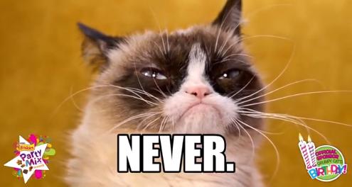 Grumpy Cat Birthday Party Orlando Sentinel